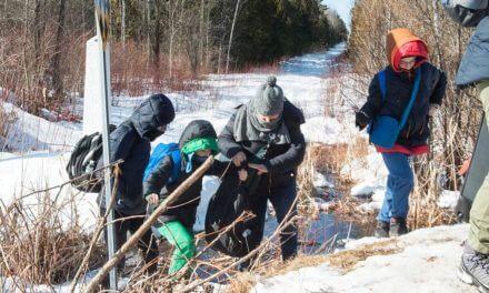 Inmigrantes, cuidado con la trampa en paso de la frontera entre EE.UU., y Canadá